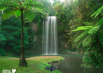Millaa Millaa Falls, Atherton Tablelands